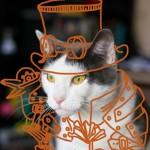 おしゃれすぎる猫芸術空中アート傑作画像18選まとめ