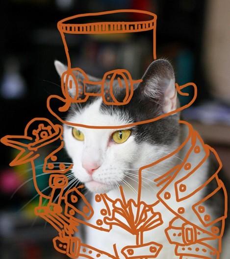 空中猫アート芸術