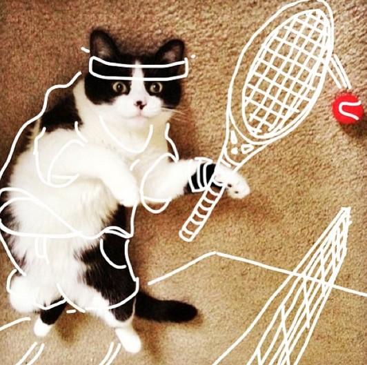 猫テニスウェア