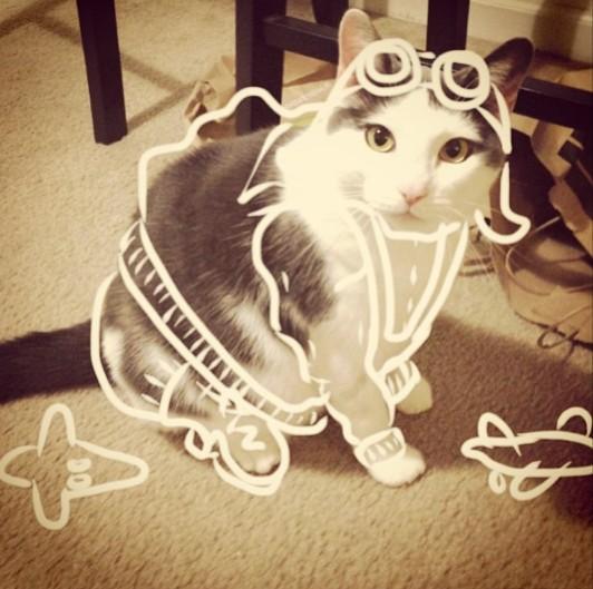 パイロット猫