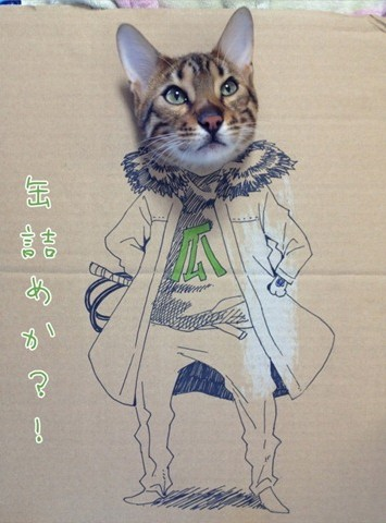猫ダンボールアート