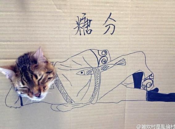 猫顔ハメダンボールアート