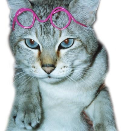 猫メガネ針金